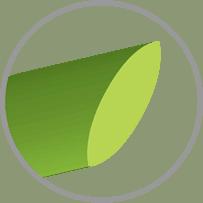 Hình dạng sợi cỏ nhân tạo