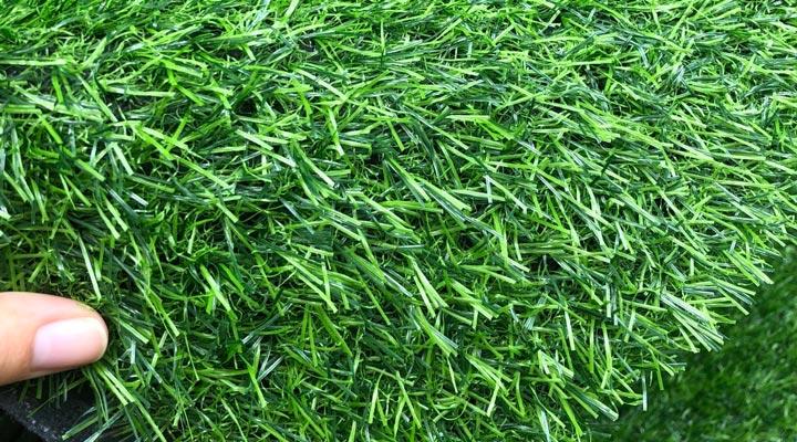 Thảm cỏ nhân tạo 2cm sg02m